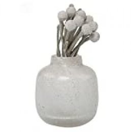Chive Nova jarrón en Forma de Jarra, Color Blanco