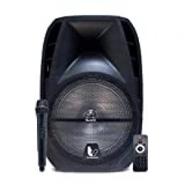 "Biwond Thundersound Altavoces Autoamplificados 470W TS15""(Bluetooth, USB/SD/AUX/Jack/, Micrófono inalámbrico, RMS 260W, Radio, LCD, Echo, Rec) – Negro"