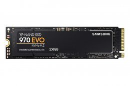 Samsung 970 EVO - Unidad de estado solido, 250 GB, color negro
