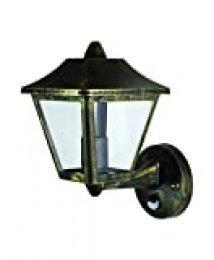 Ledvance - Lámpara de techo y pared para exteriores, aluminio, color negro y dorado