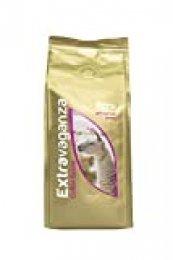 Extravaganza - Café de Perú en grano, 250 g (lote de 12)