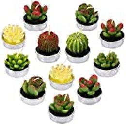 LA BELLEFÉE - 12 Velas Suculentas Plantas Cactus Decorativas para Casa Regalos para Halloween Navidad Cumpleaños Fiestas Boda Adorables Regalos para los Amantes de Suculentas